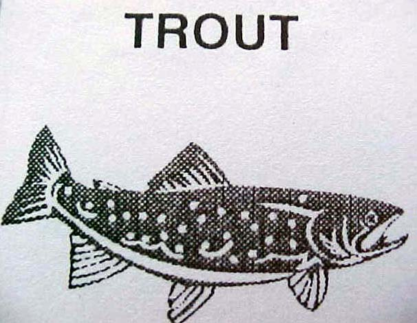 "Image ""releases:2002_2_trout_symbol.jpg"""